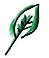 """seria """"Zielony listek"""""""